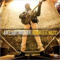 Joe Louis Walker – Hornet 's Nest