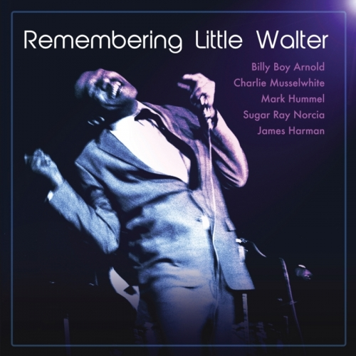 Variuos Artists - Remembering Little Walter