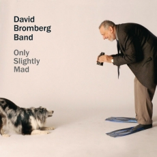 David Bromberg Band - Only Slightly Mad